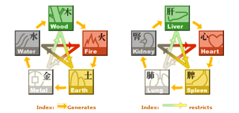 The five elements cycle
