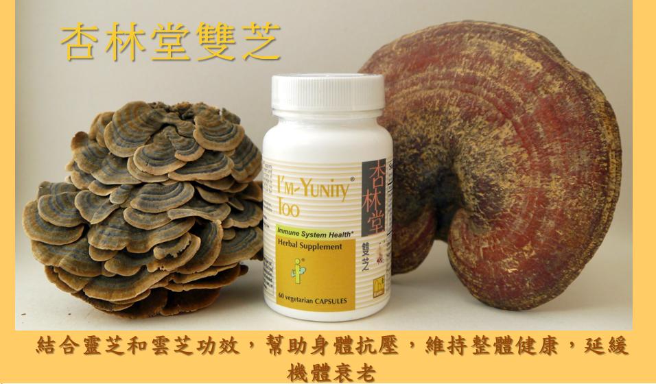 杏林堂雙芝結合靈芝和雲芝功效,幫助身體抗壓,維持整體健康,延緩機體衰老