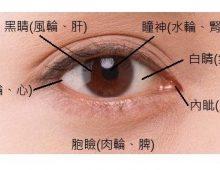 中醫藥護眼