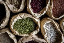 豆的營養保健作用