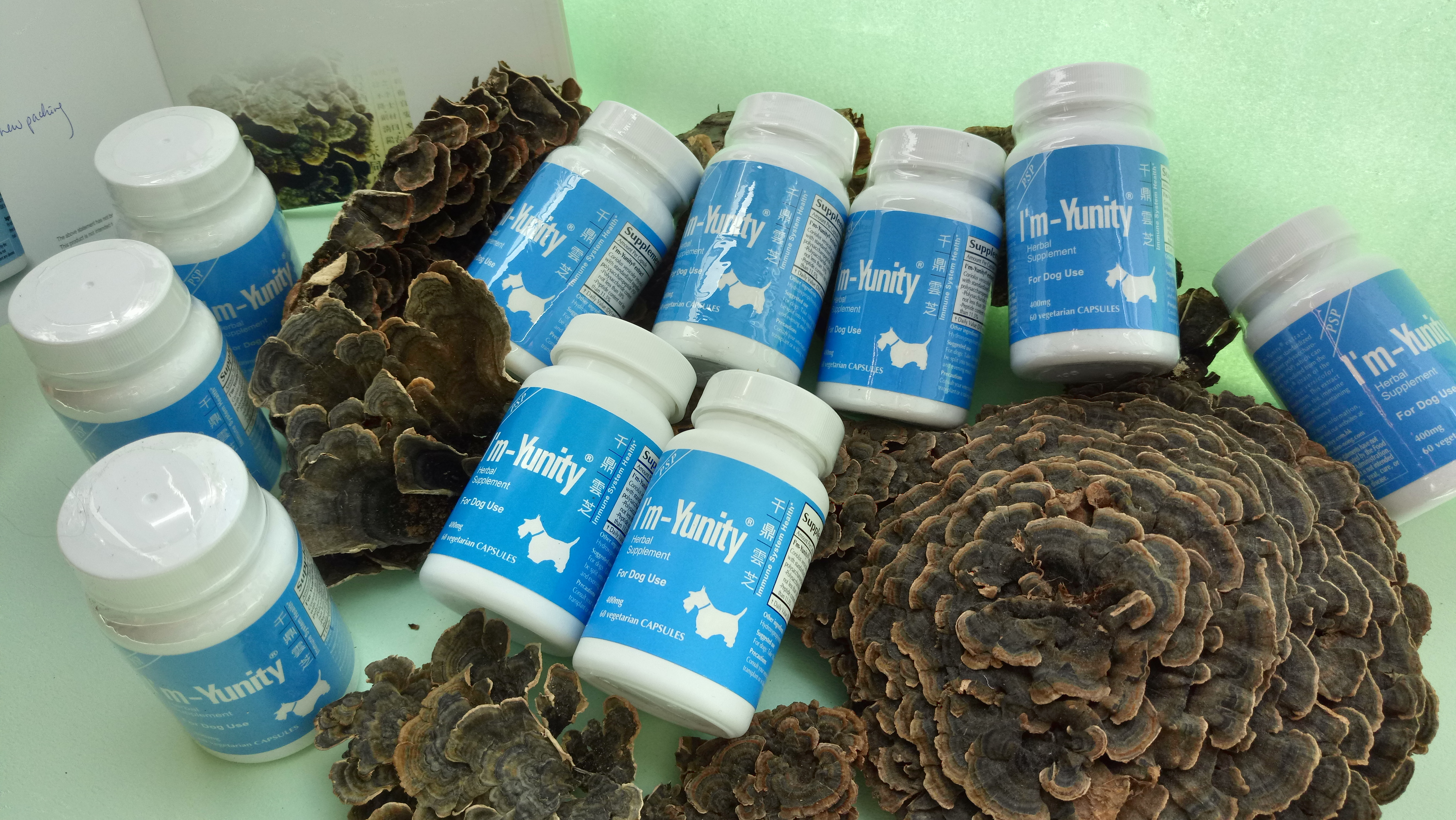 "I""m-Yunity® for Dogs is a well-researched mushroom herbal supplement for dogs' immune balance."