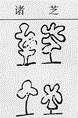 Illustration in Compendium of Materia Medica showing different kinds of medicinal mushrooms.