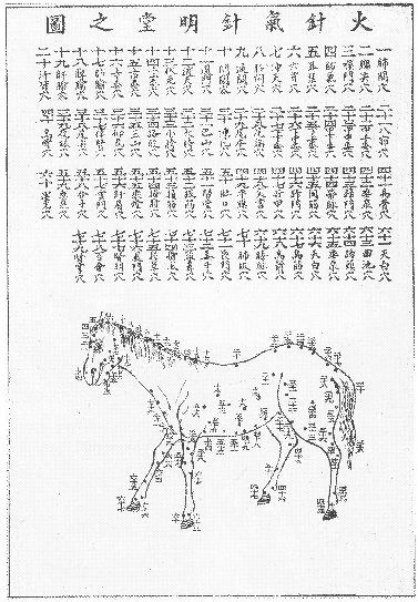 An illustration in the Classic of Ox and Horse, about heated needling therapy for horses.